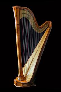 Versailles Grand Parc: Retour en images sur Harpes en scène